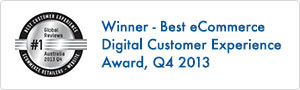 Best Digital Customer Experience in Ecommerce 2013